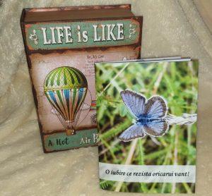 Read more about the article Idee de cadou: Povestea noastra carte personalizata