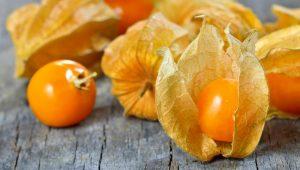 Fructul physalis – beneficii si proprietati