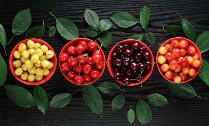 dieta cu cirese