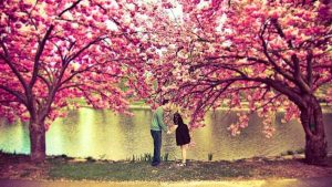 Read more about the article 5 Reguli pentru a pastra o relatie de cuplu trainica