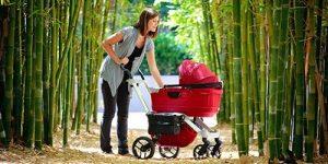 Cum sa alegi cel mai bun carucior pentru bebelusul tau