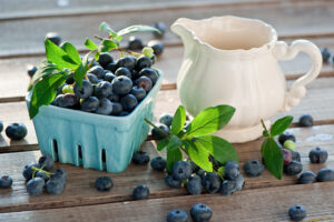 Read more about the article Afine beneficii și contraindicații. Ce tratează afinele?