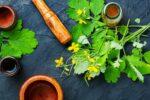 Rostopasca beneficii. 101 utilizări în medicina naturistă