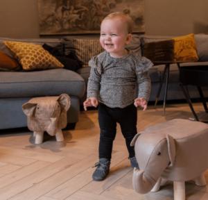 Read more about the article De ce să alegi scaune pentru copii în formă de animale