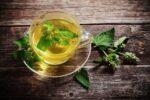 Tratamente naturiste cu melisa (roinița) – beneficii și contraindicații